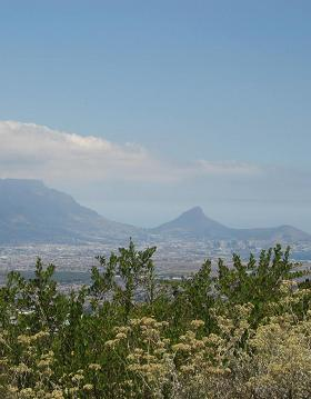 View from Tygerberg Cape Town