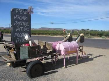 Pink Padstall in Kakamas