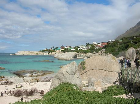 Cape Town Boulders Beach - Why Cape Town?